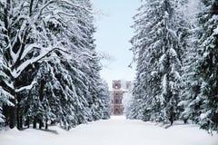 Alexander Park con nieve en Tsarskoye Selo Pushkin Foto de archivo libre de regalías