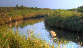 Alexander river. A curve in Alexander river, north of the city of Netanya, Israel, during summer time Stock Image