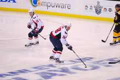 Alexander Semin Washington Capitals Royalty Free Stock Photo