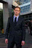 Alexander Skarsgard Royalty Free Stock Photography