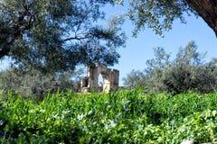 Alexanders Severuss båge i Dougga, Tunisien royaltyfri fotografi