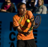Alexandr Dolgopolov Royalty Free Stock Photos