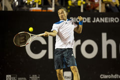 Alexandr Dolgopolov Stock Photo