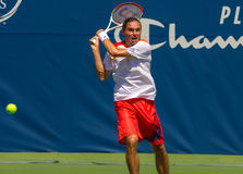Alexandr Dolgopolov Royalty Free Stock Photo