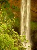 alexandra faller mauritius Royaltyfria Bilder