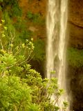 Alexandra Falls, Mauritius Royalty Free Stock Images