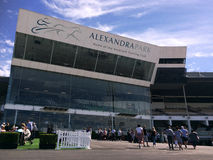 Alexandra Park Raceway in Auckland Neuseeland stockfotos