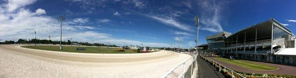 Alexandra Park Raceway em Auckland Nova Zelândia imagens de stock royalty free