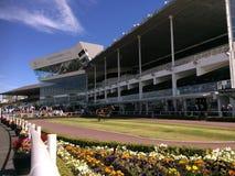 Alexandra Park Raceway em Auckland Nova Zelândia fotografia de stock