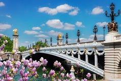 Alexandre桥梁III在巴黎,法国 库存图片