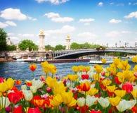 Alexandre桥梁III在巴黎,法国 免版税库存图片