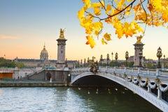 Alexandre桥梁III,巴黎 库存图片