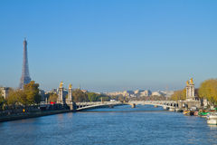 Alexandre III桥梁和埃佛尔铁塔,巴黎 库存图片