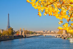 Alexandre III桥梁和埃佛尔铁塔,巴黎 免版税库存图片