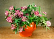 alexandria 1 жизнь все еще Букет цветков луга в оранжевых баках Стоковые Фотографии RF