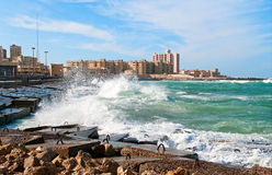 Alexandria Royalty Free Stock Photography
