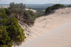 The Alexandria coastal dune fields near Addo / Colchester on the Sunshine Coast in South Africa. Photographed on a clear summer`s day from high up on the dunes stock photos