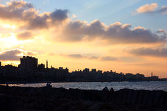 Alexandria Royalty Free Stock Images