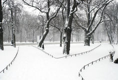 Alexandriyski park. In Saint Petersburg at snowfall stock images