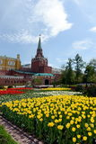 Alexandrovsky garden. Park in the center of Moscow. Stock Photography