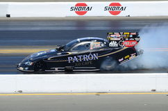 Alexis DeJoria Burnout Royalty Free Stock Images