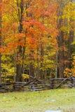 Alfa da cerca do outono Fotografia de Stock Royalty Free