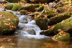 Alfa do outono da cascata Fotos de Stock
