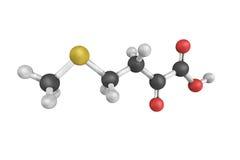 Alfa-ketomethionine, un derivado del wh ácido alfa-cetoglutárico fotografía de archivo