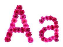 Alfabet av rosor Arkivfoton