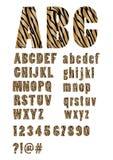 Alfabet in de huid van de stijltijger, in hoofdletters en kleine letters, aantallen, vraag en uitroepteken, karakters bij en knoe Royalty-vrije Stock Afbeeldingen