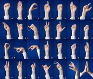 Alfabet in gebarentaal Stock Foto
