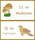 Alfabet M och N Arkivfoton