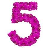 Alfabet nummer fem från orkidéblommor som isoleras på vit bakgrund Royaltyfri Fotografi