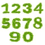 Alfabet nummer noll till nio Arkivfoto
