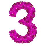 Alfabet nummer tre från orkidéblommor som isoleras på vit bakgrund Arkivfoto