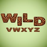 Alfabet som imiterar leopardpäls Arkivbild