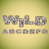 Alfabet som imiterar sebrapäls Arkivbilder