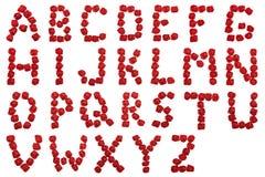 Alfabet van rode rozen Brieven op witte achtergrond worden ge?soleerd die Brieven van bloemen royalty-vrije stock foto
