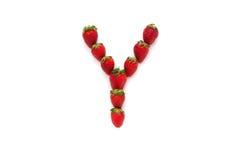 Alfabet Y, bokstav från gruppen av jordgubbar är ordnat Top beskådar bakgrund isolerad white Arkivbilder