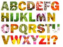 alfabetblommamotiv royaltyfri illustrationer