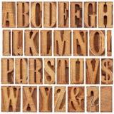 Wood typalfabet för boktryck Royaltyfri Fotografi