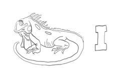 Alfabetfärgläggning söker djur serie` för `, Arkivbild