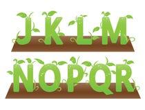 Alfabeti di tema verdi da J alla r immagine stock