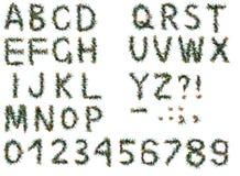 alfabetjul Arkivbild
