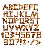 alfabeto 3d en estilo de un safari Imagen de archivo
