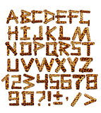 alfabeto 3d nello stile di un safari Immagine Stock