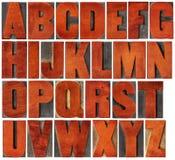 Alfabeto ajustado no tipo da madeira da tipografia Fotos de Stock