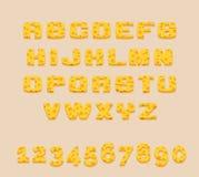Alfabeto amarillo delicioso estilizado y dígitos del ABC del queso suizo del vector Utilice las letras para hacer su propio texto Ilustración del Vector