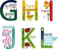 Alfabeto animal Imagen de archivo