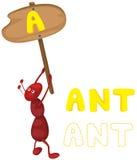 Alfabeto animal a con la hormiga Imágenes de archivo libres de regalías